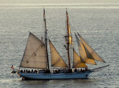 Pirate Ship on the Pacific