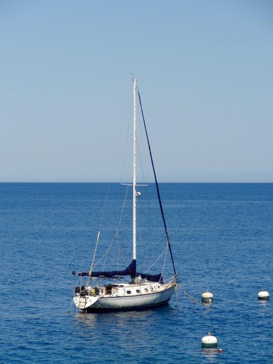 Sail Boat at Hamilton Cove