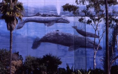 Wyland Whaling Wall