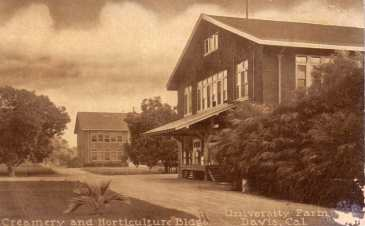 UC Davis 1900