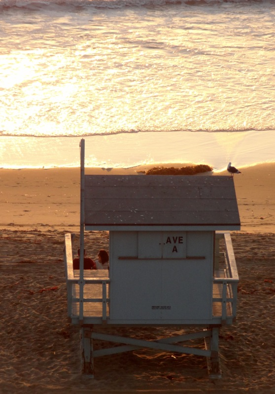 Lifeguard Shelter